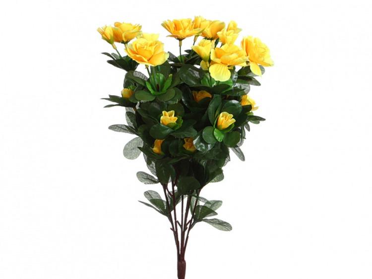 Павлиньими перьями, ростов купить цветы через интернет магазин недорого
